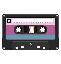 audio cassete vector image vector image