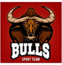 Bulls Mascot vector
