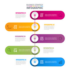 business infographics design elements template vector image