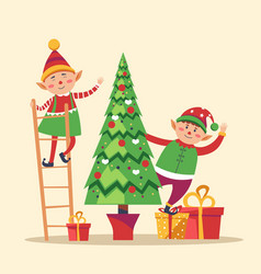 Elves preparing christmas pine evergreen tree for vector