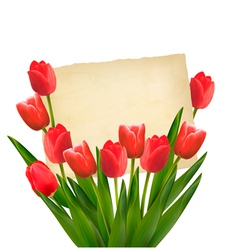 Red tulips with Happy Mothers Day note vector image