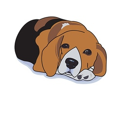 Sleepy beagle vector