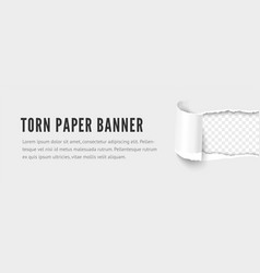 Template paper horizontal strip with torn hole vector