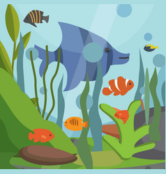 underwater seascape with exotic fish vector image