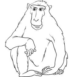 macaquee cartoon coloring page vector image