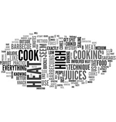 When to use high heat on your barbecue text word vector