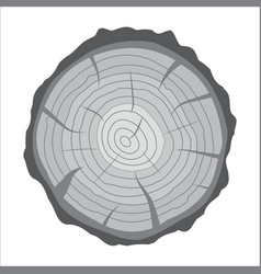 Cross section tree stump or trunk wood cut vector