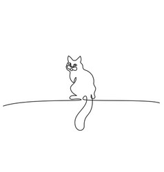 one line drawing cat sitting with big tail vector image