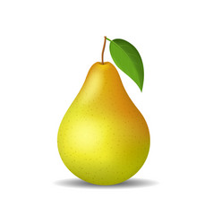 realistic detailed 3d whole pear isolated on a vector image