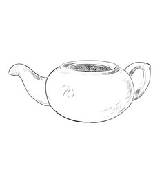 sketch of teapot vector image
