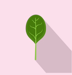spinach leave with shadow icon flat style vector image