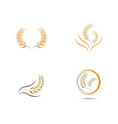 wheat symbol vector image