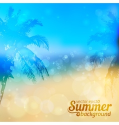 Sunny summer backdrop with palms vector image vector image