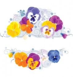pansies and forget-me-not vector image