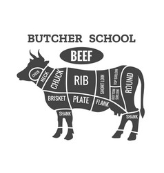 Cow butcher diagram vector