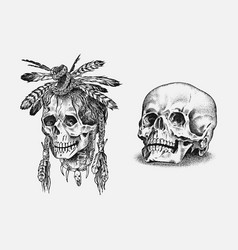 human skull dead native american indian vector image