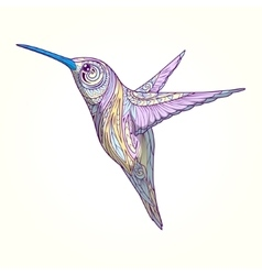 Hummingbird with abstract ornament vector image