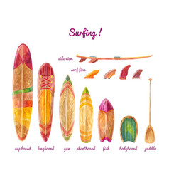 Surfboards different lengths and types vector
