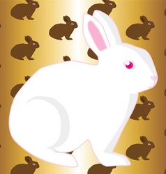 White rabbit vector image