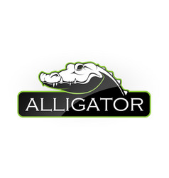 alligator vector image