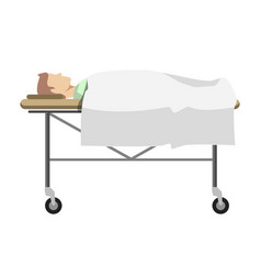 male person lying on medical table with wheels vector image vector image