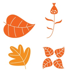 Autumn leaves set isolated on white vector image vector image