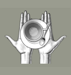 female hands with a cup tea on palms vector image