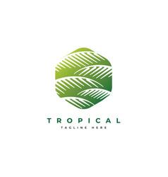palm leaf logo design templateluxury elegant palm vector image