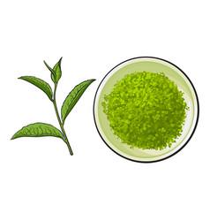 hand drawn bowl of matcha powder and green tea vector image vector image