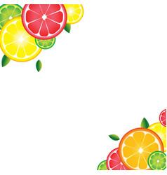 background of citrus fruits for bar cocktails vector image