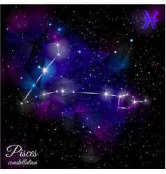 pisces constellation with triangular background vector image vector image