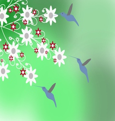The Hummingbirds vector image vector image