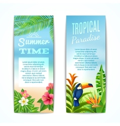 Tropical Summer Banner vector image vector image