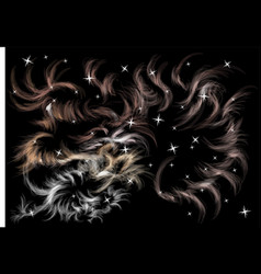 Abstract decor with stars vector