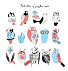 Collection of graphic owls vector
