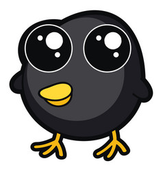 cute little black chicken on white background vector image