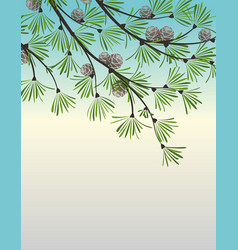 decoration pine branches vector image