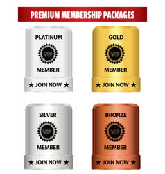 Premium membership packages vector