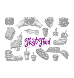sketch fast food elements set vector image vector image