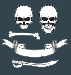 pirate flag toolkitxa vector image vector image