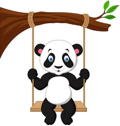cartoon cute panda swinging vector image