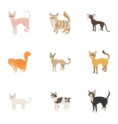 Cats icons set cartoon style vector