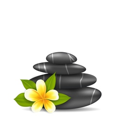 Frangipani Flower plumeria and Pyramid Zen Spa vector image