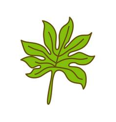 leaf tropical design template vector image
