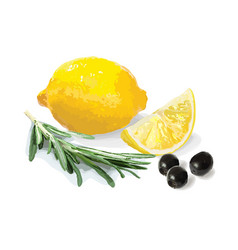 Lemon olives and rosemary vector