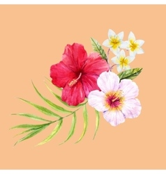 Watercolor tropical composition vector image