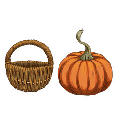 with pumpkin and wicker basket isolated on white vector image