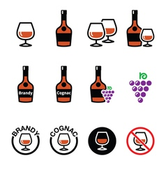 Brandy and cognac icons set vector image vector image