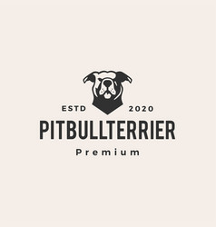 american pitbull terrier hipster vintage logo icon vector image
