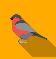 bullfinch icon in flate style isolated on white vector image